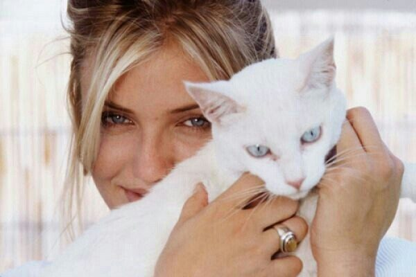 Cameron Diaz with Cat