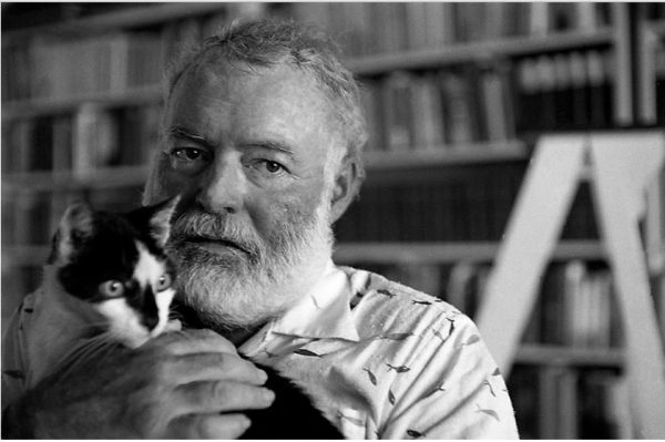 Ernest Hemingway with cat