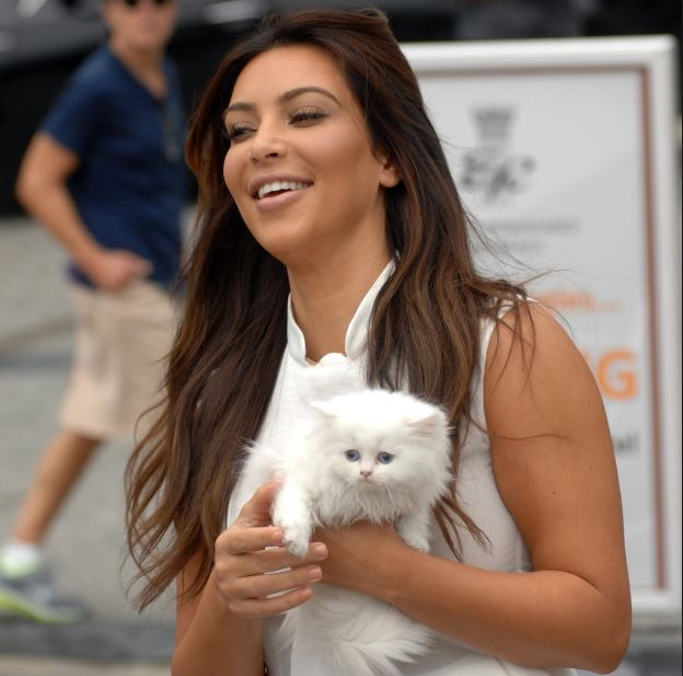 10 Celebrity Cat Lovers