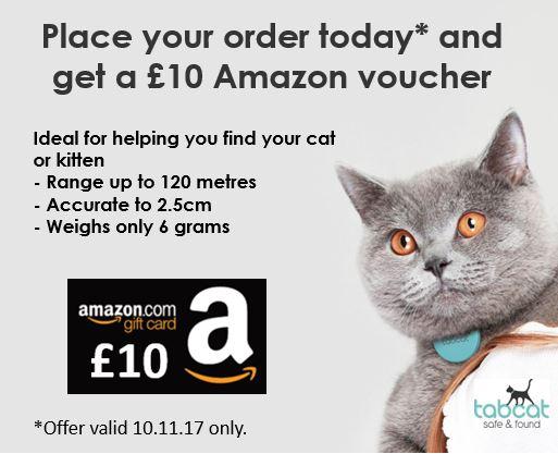 £10 Amazon Voucher